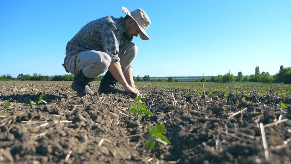 αγρότες και νέοι παραγωγοί